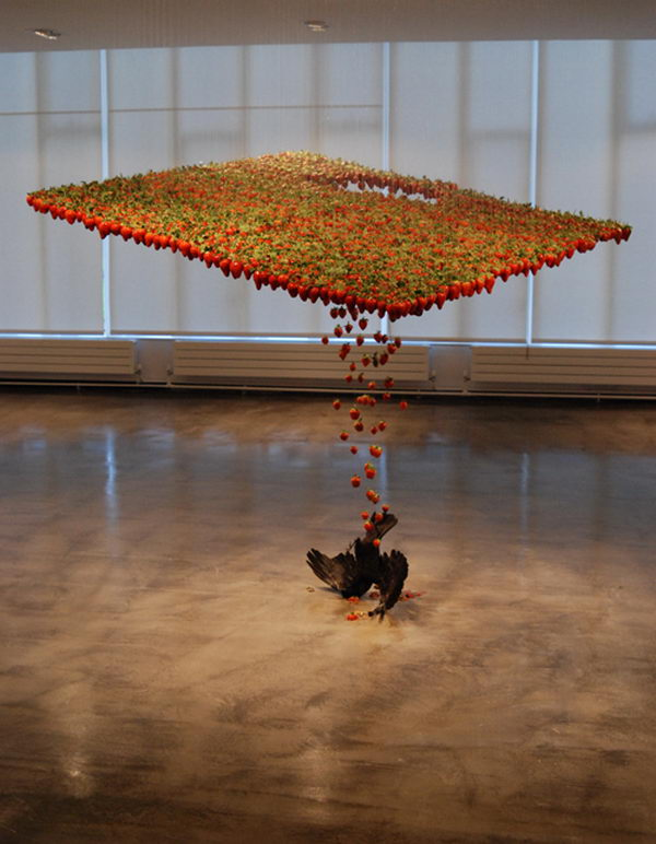 Fluid Art Installation. Created with strawberries, taxidermied crow, fishing hooks, nylon, and was exhibited at Building With Colour, Gallery North, Newcastle and Consumer, Palais de Tokyo, Paris.