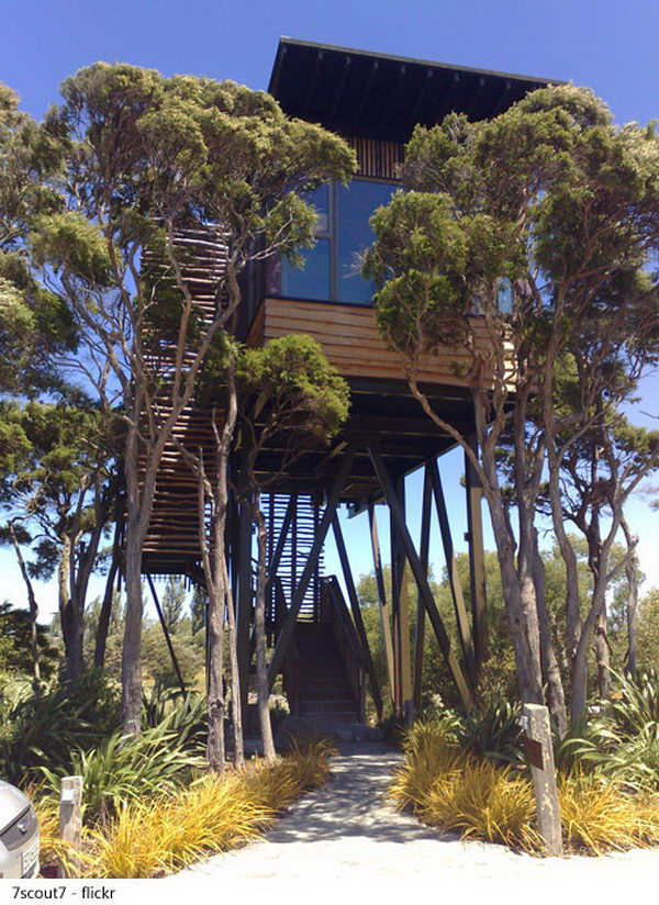 Hapuku Lodge, Kaikoura, New Zealand. Located a little over 6 miles north of the eco-tourism town of Kaikoura, Hapuku Lodge features five luxurious tree houses, three luxury suites, a unique luxury room that overlooks the pool and a one bedroom room.