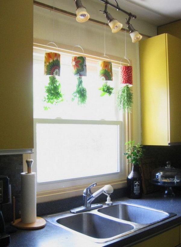 Hanging kitchen garden.