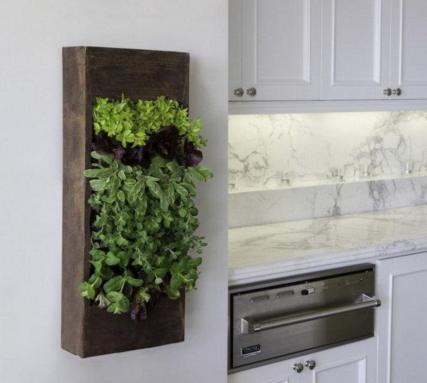 Wooden box kitchen herbs.