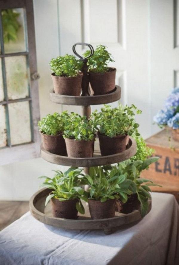 Tiers of herbs.