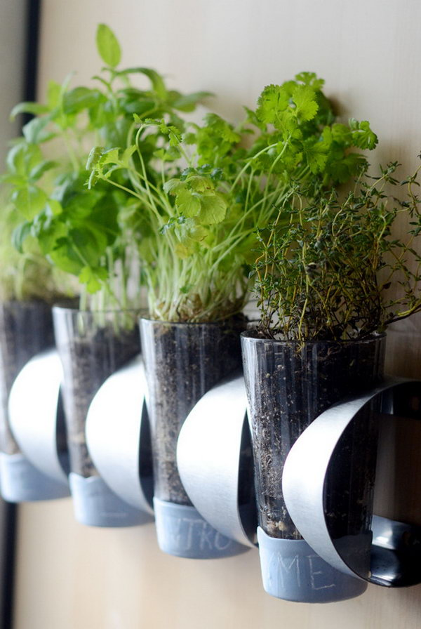 Indoor herb garden on an ikea wine rack.