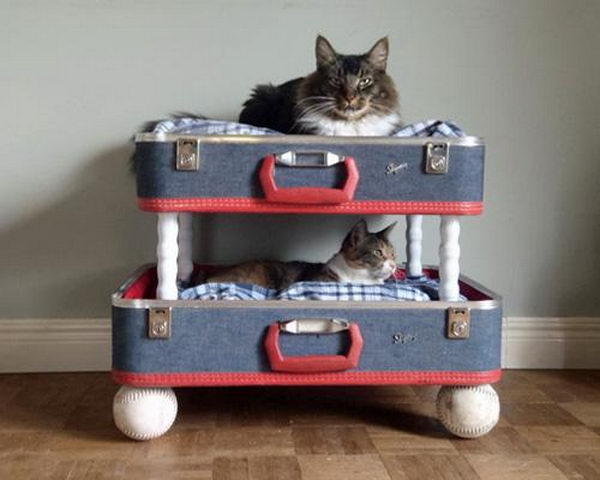 Pet Bed Made From Old Suitcase,