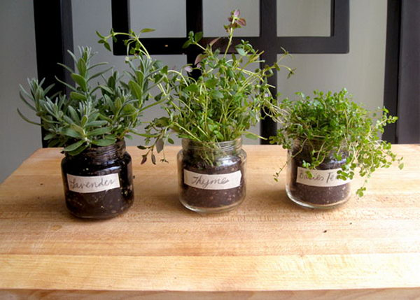 A Baby Food Jar Herb Garden. It would be a waster to throw baby jars away. Transfer seedling in the jars to present a fresh spring style for beautiful garnishment.
