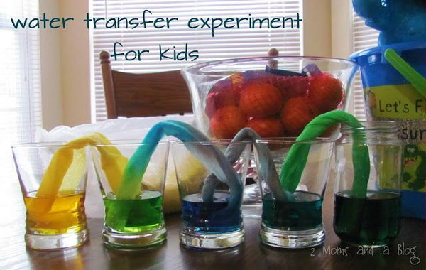 Paper towel water transfer science experiment for kids. This is a fun and educational science experiment and the kids get so much science fun from this wonderful game. But this takes patience... probably you will wait at least three hours till the water made it through the other cups.