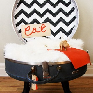 Love Your Fur Baby with These Cutest DIY Projects