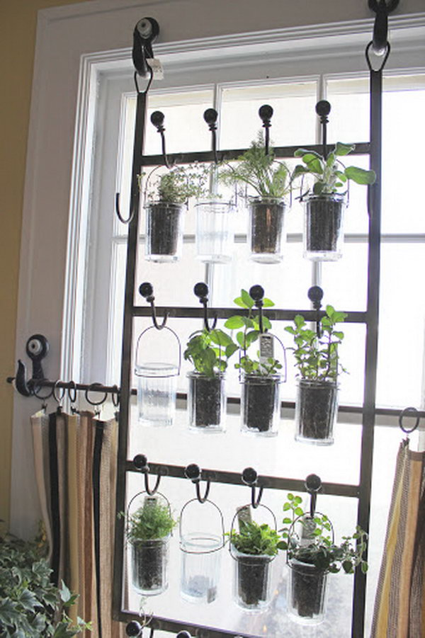 Indoor Tea Garden 25 cool diy indoor herb garden ideas indoor garden from hooks and rods workwithnaturefo