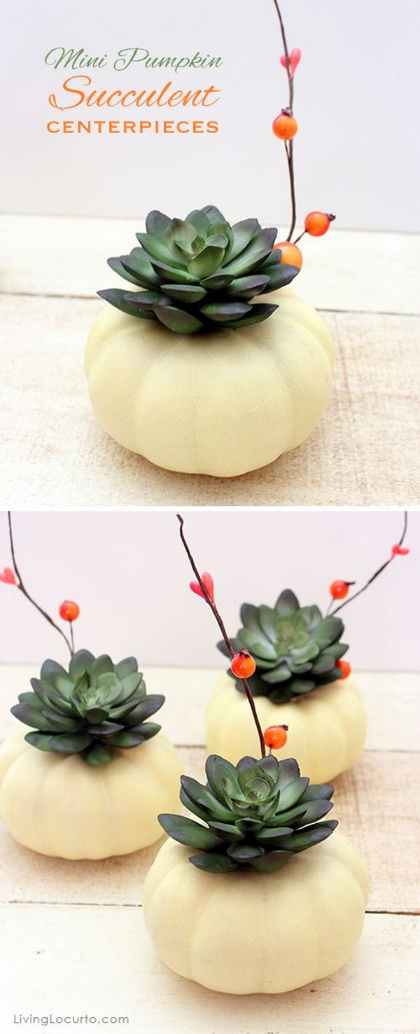 Mini Pumpkin Succulent Centerpiece Craft.
