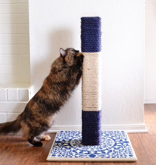 Keep Your Cat from Scratching Your Furniture with this DIY Rope Scratching Post.