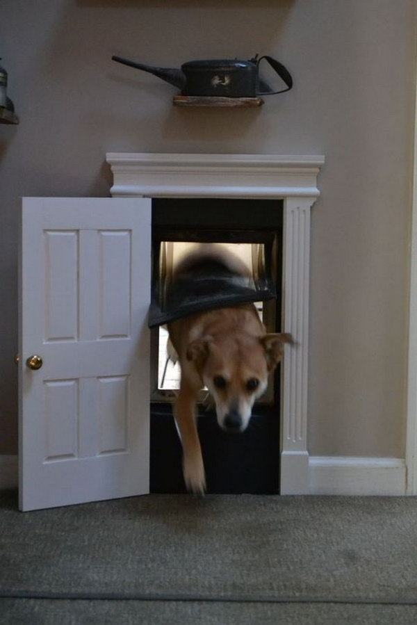DIY Dog Door.