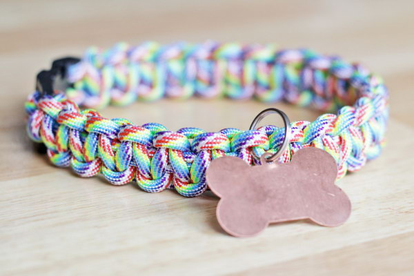 DIY Rainbow Paracord Dog Collar.