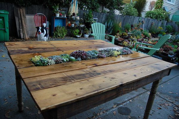 DIY Succulent Pallet Table.  See the tutorial