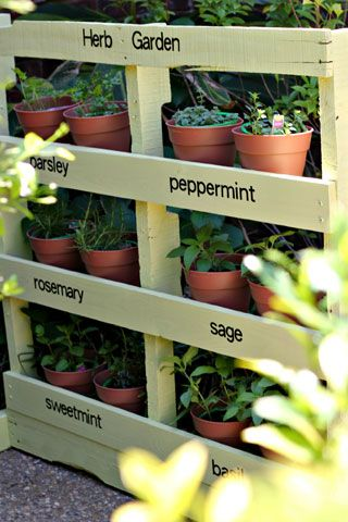 Make an Herb Garden from a Pallet.