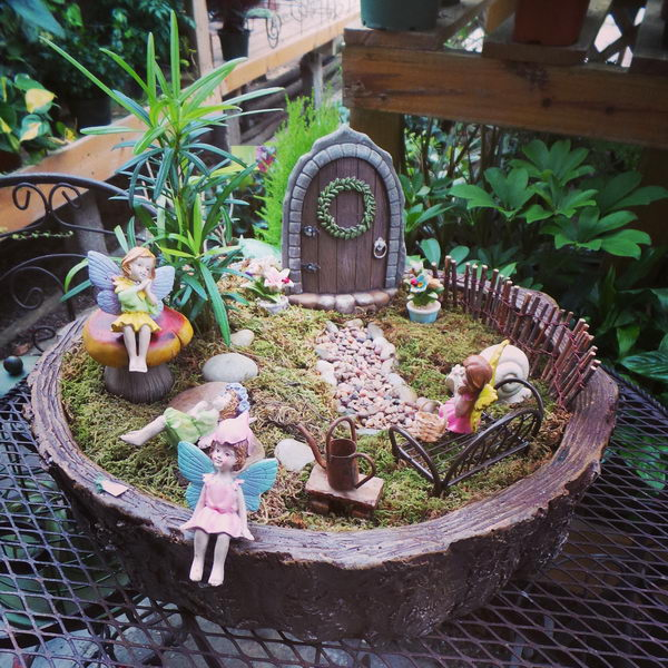 Miniature Fairy Garden Filled with Magic.